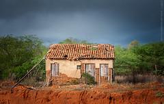 2017.0033 (Adriano Aquino) Tags: brasil brazil bahia countryside sky rural interior nordeste nordestino casa house home fazenda hacienda farm old ancient jeremoabo taipa casadetaipa tapera door windows