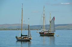 Endeavor & Maybe (Zak355) Tags: maybe sailing sail ship yacht boat training ketch rothesay isleofbute bute scotland scottish masts tallship riverclyde endeavor