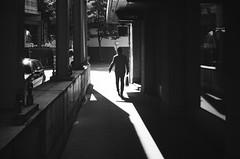 ROMA (gato-gato-gato) Tags: 35mm ch contax contaxt2 iso400 ilford ls600 noritsu noritsuls600 schweiz strasse street streetphotographer streetphotography streettogs suisse svizzera switzerland t2 zueri zuerich zurigo z¸rich analog analogphotography believeinfilm film filmisnotdead filmphotography flickr gatogatogato gatogatogatoch homedeveloped pointandshoot streetphoto streetpic tobiasgaulkech wwwgatogatogatoch zürich black white schwarz weiss bw blanco negro monochrom monochrome blanc noir strase onthestreets mensch person human pedestrian fussgänger fusgänger passant sviss zwitserland isviçre zurich autofocus