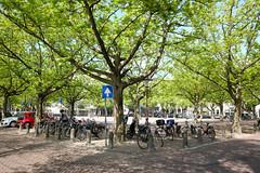 DSCF2252.jpg (amsfrank) Tags: candid amsterdam rivierenbuurt prinsengracht marcella cafe bar marcellas terras sun people tourists