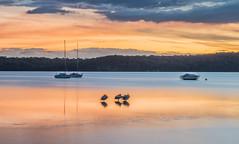 Tranquil-lake_DSC8587 (Mel Gray) Tags: lakemacquarie eleebana lake australia sunset water newsouthwales