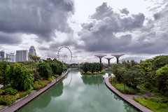 Greens and Concrete (Lemuel Montejo) Tags: singapore singapura singaporeflyer water reflection river sky clouds supertree supertreegrove