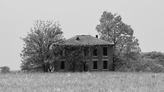 when nature comes a callin (David Sebben) Tags: abandoned farmhouse brick nature iowa infrared lonely