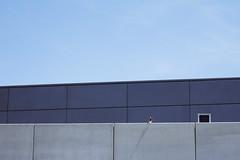 Guard (CoolMcFlash) Tags: architecture simple simpel minimalistic abstract abstrakt minimalism minimalistisch geometry geometrie bird canon eos 60d blue sky building architektur vogel gebäude sitting sitzen fotografie photography vienna wien blau tamron b008 18270