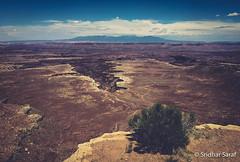 Island in the Sky, Canyonlands National Park, Utah (USA) - June 2016 (SridharSaraf) Tags: 2016 canyonlandsnationalpark canyonlandsnationalparkphotography islandinthesky islandintheskyphotography nationalpark nationalparkphotography photography sridharsaraf summer usa ut utphotography unitedstates unitedstatesofamerica untedstatesphotography utah utahphotography moab