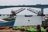 Pamban Bridge, Rameswaram (RossCunningham183) Tags: pambanbridge rameswaram india southindia tamilnadu fisherman boats birds railbridge rail fish