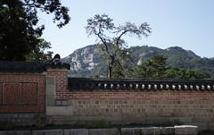 IMG_6718_RAW (jeremy!) Tags: seoul korea southkorea gyeongbokgungpalace 경복궁 canoneosrebelt1i canon1740mm