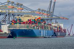 Container Ship 'MOL Triumph' - Prinses Amaliahaven - Port of Rotterdam (Frans Berkelaar) Tags: maasvlakterotterdam zuidholland nederland nl triumph mol moltriumph prinsesamaliahaven portofrotterdam rotterdam 2emaasvlakte containerschip containership rwg rwgcontainerterminal