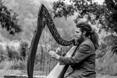 Ireland - Blarney - Castle gardens (Marcial B) Tags: irlanda ireland marcial bernabeu bernabéu blarney castle castillo jardines gardens arpa harp irish irlandesa irlandes irlandés music música musica musician musico músico