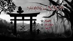 Shadow Ninja Video Game (Matte painting) (Blazgad) Tags: mattepainting