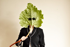 Incognito (Apionid) Tags: sunglasses rhubarb disguise incognito nikond7000 werehere hereios 365 camouflage leaf