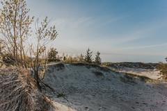 (kbarker) Tags: canon6d 1740mm grand bend sand dunes pinery sunset