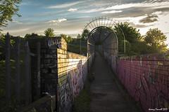 Early morning on Narroways Hill (zolaczakl) Tags: bristol earlymorninglight narrowayshill stwerburghs photographybyjeremyfennell nikond7100 nikonafsnikkor24120mmf4gedvrlens graffiti streetart railwaybridge wall cagedwalkway uk england southwest