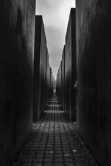 Memorial to the Murdered Jews of Europe - Berlin (Mauro Garcia Fatte) Tags: abstract dramatic surreal surrealism contrast explore street canon eos 60d germany berlin war holocaust memorial memory jews monocromatic monochrome minimal minimalism outdoor rua travel trip backpacker