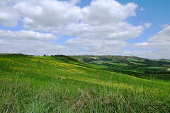 Val d'Orcia spring style (LaDani74) Tags: sanquiricodorcia landscape nature naturescape spring hills grass flower tuscany italy sky clouds toscana siena sigma1750 canoneos760d valdorcia country countryside tuscan