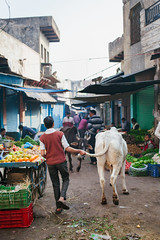Discovery India (Eason Q) Tags: city life people uttar pradesh india incredible kids men girl boy children indian villages rural village wide angle street photography moment culture tradition shops snacks kals pics ancient historic shah jahan mumtaz history myth legend lord shiva