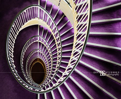 """Premier Inn Spiral Staircase II"" London, UK (davidgutierrez.co.uk) Tags: london architecture art city photography interior davidgutierrezphotography nikond810 nikon urban travel color londonphotographer photographer uk people night abstract afsnikkor1424mmf28ged 1424mm colors colours colour street 伦敦 londyn ロンドン 런던 лондон londres londra england europe beautiful cityscape davidgutierrez capital structure unitedkingdom britain greatbritain touristattraction vibrant vivid premierinnlondonblackfriarshotel premierinn blackfriars hotel staircase spiral spiralstaircase purple cityoflondon citiesoflondonandwestminster centrallondon windows ultrawideangle d810 landmark beautifulstaircase purplestaircase amazing indoor interiors"