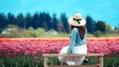 Tulip Season (Photo Alan) Tags: tulip people beauty hat field outdoor bluesky flowers flower tulipfield vancouver canada carl zeiss zeissaposonnart2135ze
