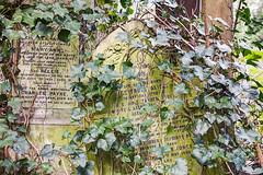 Abney Park Cemetery (3)