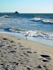 Floride - Naples (mcbail) Tags: floride naples usa beach golfe du mexique