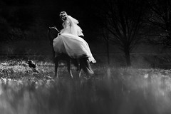 blurred (pipe notjustaphoto) Tags: bride horse dreamy gras evening riding woman white dress