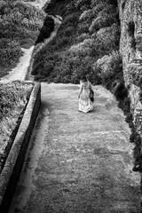 Partir sur les chemins! (guillaumegesret) Tags: saintmalo girl walk street city wall monochrome moment streetview streetphotogrpahie streetphotographer structure scène streetart style black blanc blackandwhite bretagne brittany blackwhite bw human humaniste humain history story hair