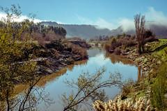 ºº WAiToTARA ANZAC mOrning ºº (m+m+t) Tags: dscf410314 mmt meredithbibersteindesign newzealand fujixt1 fujixseries fujimirrorless 35mm taranaki river water waitotara anzacday morning mist nature northisland landscape