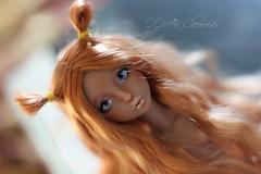 IMG_5932 (Cleo6666) Tags: lana lillycat cerisedolls marron glacé bjd doll chibbi
