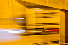 20170214-225108-StCo (St Co) Tags: 2017 antwerpsestraat belgië bewerkingstevencorsmit boom copyright eigendomstevenancorsmit europa fotograafstevencorsmit jaar locatie provincieantwerpen stratenpleinenboom vlaanderen be