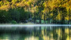 La maison du lac (Fred&rique) Tags: lumixfz1000 photoshop raw lac val jura brume roseaux eau maison arbres forêt