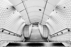 Waterloo Tube Station, London, UK (davidgutierrez.co.uk) Tags: london architecture art city blackandwhite davidgutierrezphotography nikond810 nikon interior londonunderground urban travel blackwhite photography people londonphotographer property uk photographer monochrome stairs bw black white blackandwhitephotography arts abstract tube unitedkingdom 伦敦 londyn ロンドン 런던 лондон londres londra england europe beautiful cityscape davidgutierrez capital structure britain greatbritain centrallondon d810 escalator buildings lights transport light design tubestation symmetry building station londonboroughoflambeth lambeth waterloo interiors indoor nikon2485mmf3545gedvrafsnikkor nikon2485mm