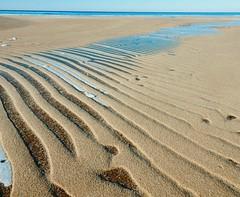 Anglų lietuvių žodynas. Žodis sand reiškia 1. n 1) smėlys; fine sand smiltis; built on sand pastatytas ant smėlio, netvirtas, nestiprus; 2) pl smiltynai, smėlynė; pliažas; to plough the sand(s) priež. semti vandenį rėčiu; 3) perk. pl laikas; the sands are running out laikas baigiasi; 2. v barstyti lietuviškai.