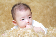 398A8006 (AlexSSC) Tags: baby photography indoor strobist flashlight studio setup sydney