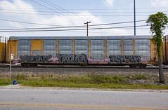 (o texano) Tags: houston texas graffiti trains freights bench benching bronz value bozo