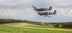Spitfires over Kent (brian_stoddart) Tags: aircraft spitfires sky flying vintage greatbritain green countryside kent uk fields ww2 nostalgia clouds england