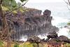 PA220595tn (mrkevinw08) Tags: korea jeju daepojusangjeollicliff daepo jusangjeollicliff jusangjeolli cliff