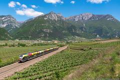 Flirt verso Nord (Damiano Piovanelli) Tags: etr170 sad treno treni trenitalia flirt stadler brennero brenner brennerbahn avio