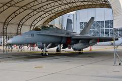 VX-31 Devils F/A-18D Hornet BuNo 164279 (skyhawkpc) Tags: nid knid copyright allrightsreserved gverver vx31dustdevils fa18d hornet 164279 dd113 nawschinalake airshow armitagefield chinalake ca 2017 mcdonnelldouglas usnavy naval aviation aircraft