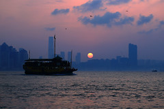 Lei Yue Mun seafood dinner cruise (C. Alice) Tags: color city water people sea curise orange sun sunset boat shadow cloud reflection sky beach seashore 2017 hongkong summer canonef24105mmf4lisusm canoneos6d eos6d canon 24105mm favorites50 favorites100 1000views 1500v60f aatvl01 2000views aatvl02