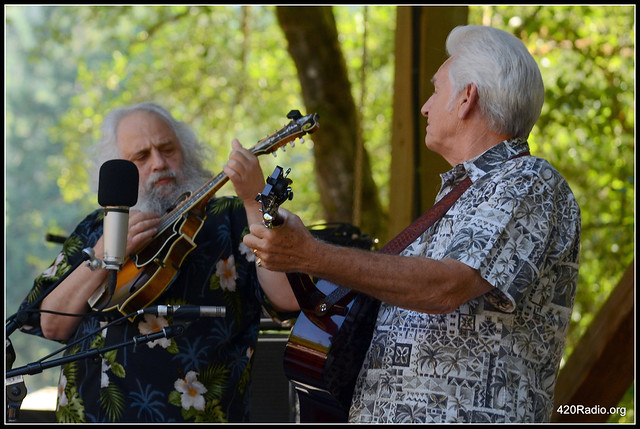 Northwest String Summit - North Plaines, OR - July 2015