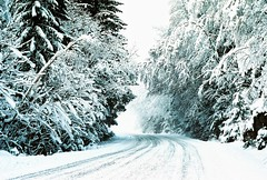 Ready... Set... Snow. (ericste.in) Tags: ifttt 500px trees winter road white snow norway oslo norge seasons snowy icy wonderland forest