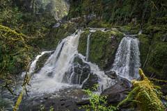 Lower Mashel (writing with light 2422 (Not Pro)) Tags: lowermashelfalls washingtonstate waterfall landscape richborder sonya77 moss