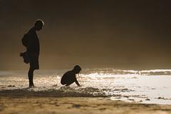 Dinard beach (Berry_collins) Tags: 2016 canon5dmark3 paysage sea mer plage beach sun soleil amateur landscape extérieur light vague 100400