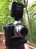 OMD EM5 mk1 Yongnou 560TX controller (Carl Weis1) Tags: woman girl model georgia peach blonde strobist flash off camera beauty outdoors