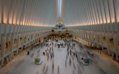 New York - World Trade Center Transportation Hub (Toon E) Tags: 2017 usa newyork manhattan worldtradecenter wtc subway path trainstation station movingpeople people indoors sony 7rm2 zeiss sonyfe1635mmf4 newyorkcity nyc