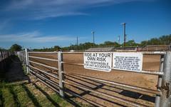 20170506_Sheriffs_Posse_Arena_DP_003 (teakdetour) Tags: barrel cowboy horse ranch rodeo vaquero