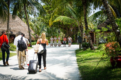 Welcome to your Island Paradise (judy dean) Tags: judydean 2017 holiday maldives kuredu travellers weary island welcome staff drums sand warmth palm trees