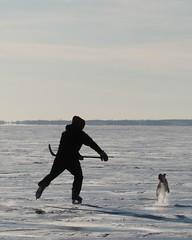 Kingston, ON - Skating on Lake Ontario (berlin_chick) Tags: hockey icehockey man doc puck stick ice frozen freezing silhouette kingston ontario canada winter skating lakeontario nationalsport iconic snow sunny