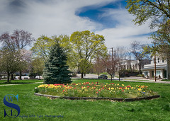 Sping   colors on the green (Singing With Light) Tags: 2016 2017 23rd alpha6500 april ct duckpond event milford mirrorless singingwithlight springcolors upperduckpond walkamileinhershoes a6500 downtown photography singingwithlightphotography spring