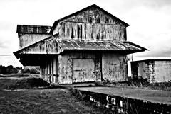 On Highway 61 Blues Trail to Juke Joint Festival in Clarksdale (forestforthetress) Tags: bw blackandwhite monochrome architecture highway61 omot nikon building rural abandoned ruraldeterioration